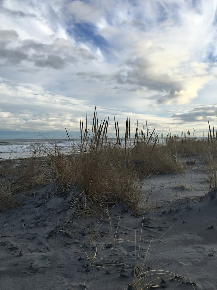 Vacation by the Dunes