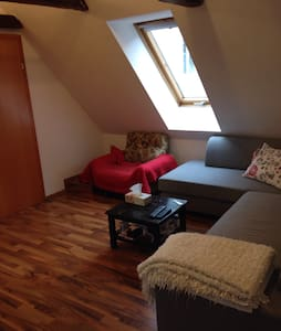 Room in charming attic-apartment - Graz
