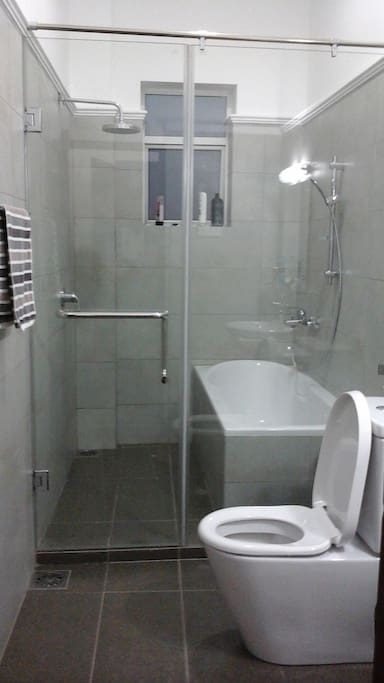 Bathroom in the Master BR
