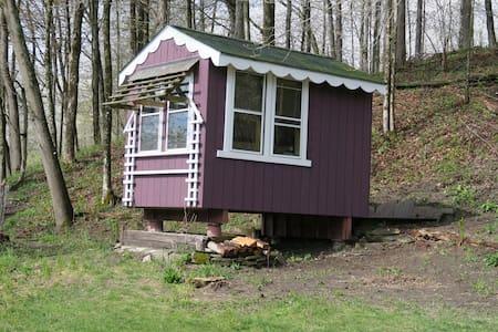 Fiddlehead North Cabin