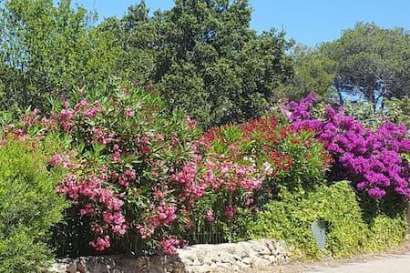 Villetta indipendente con giardino
