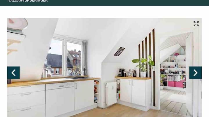 Apartment close to the viking museum and cathedral