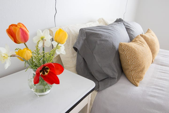 MASTER BED/BATH, SCENIC, TRAILS, MSU, HOSPITAL