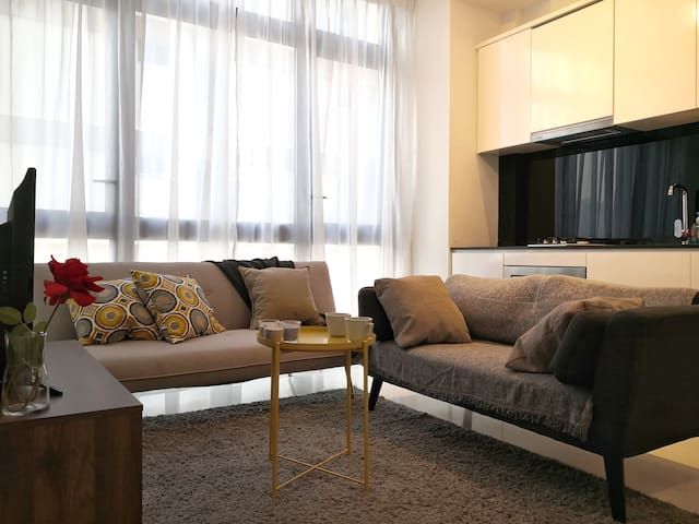 Deluxe 3 BR Apartment/close to MRT