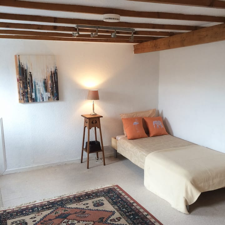Spacious cosy room in the attic near the centre