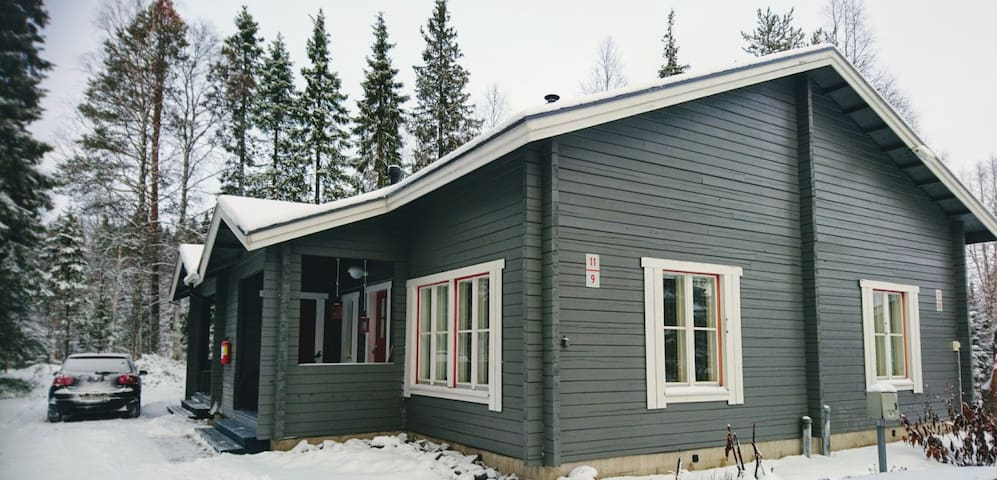 Cosy Loft Apartment in Ylläs