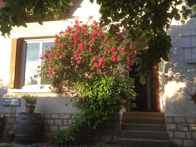 Chambre individuelle dans maison avec jardin - Dijon - Rumah