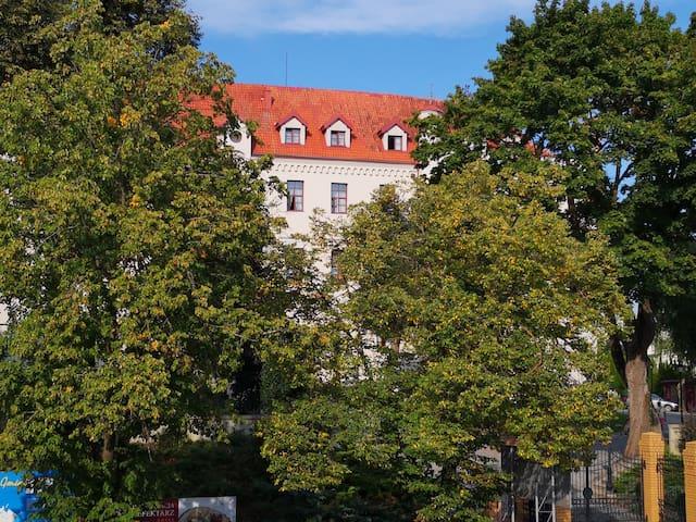 Apartament z widokiem na Zamek