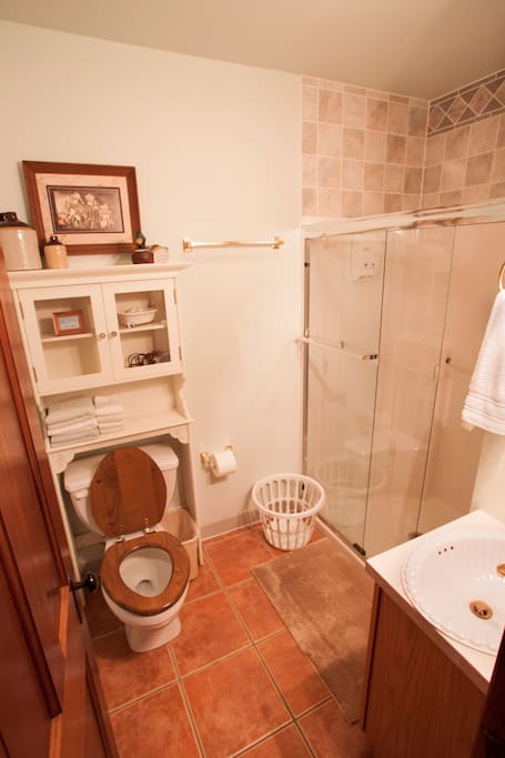 Private bathroom has roomy, stand-up shower