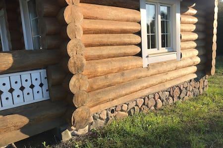 Деревянный домик на берегу лесного озера на хуторе