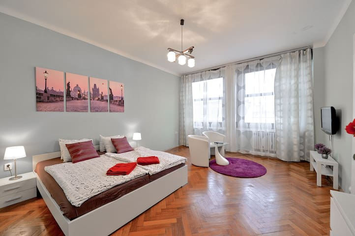 Awesome Apt In the Heart of Prague! - 布拉格 - 公寓