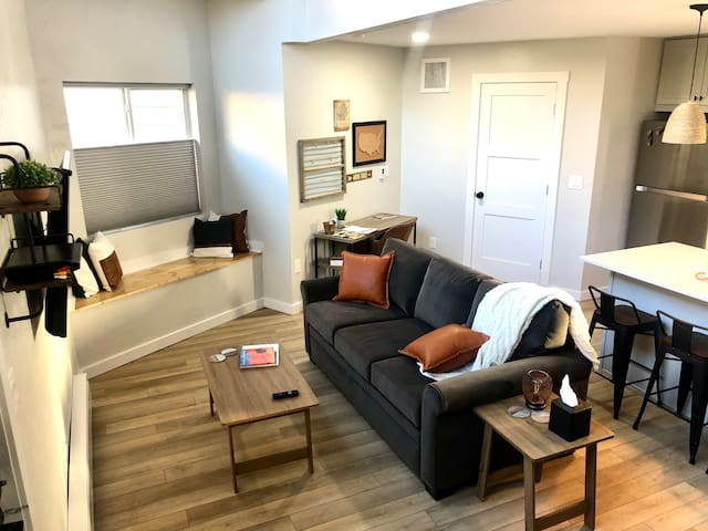 Living Area with Queen Pull Out Couch