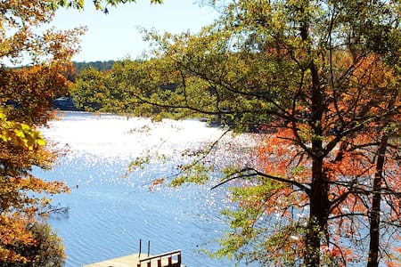 Pet-friendly, private lakefront cottage & dock!
