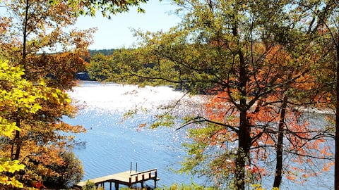 Pet-friendly, private lakefront cottage & dock!