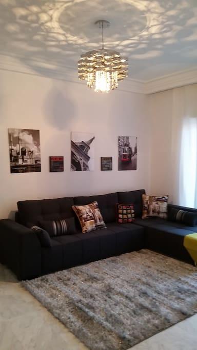 Elegant living room / Salon élégant