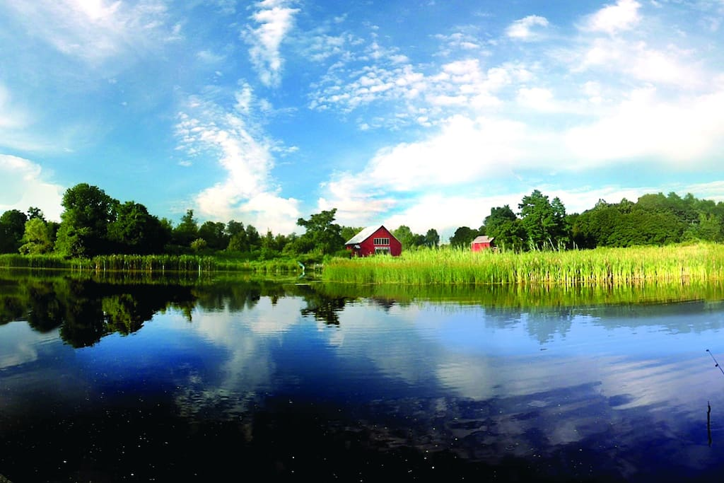 Our 1.5 acre farm pond– teeming with  large mouth bass and blue gill. Bring your pole or use one of ours.