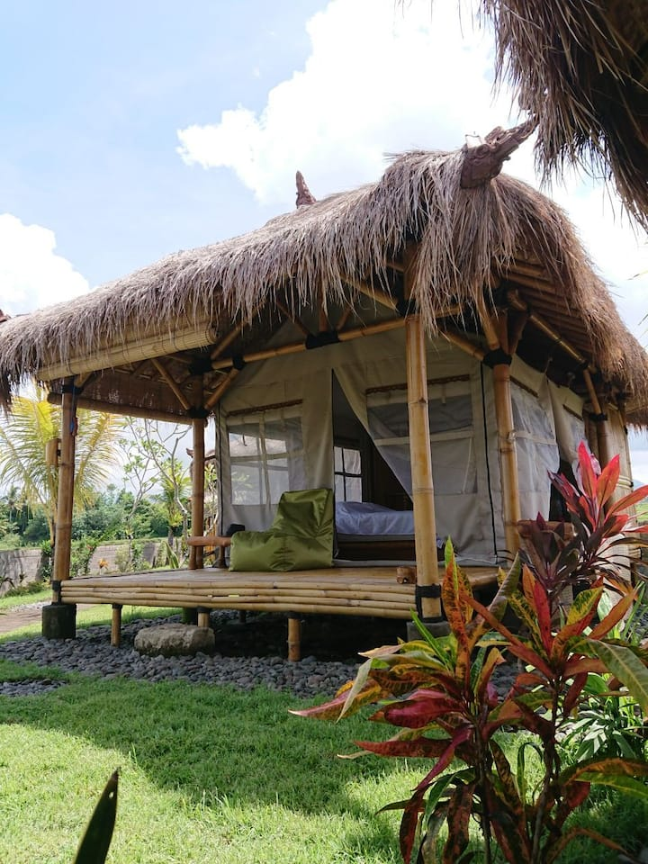 Bali Tiger Camp: Bungalow with Sea View