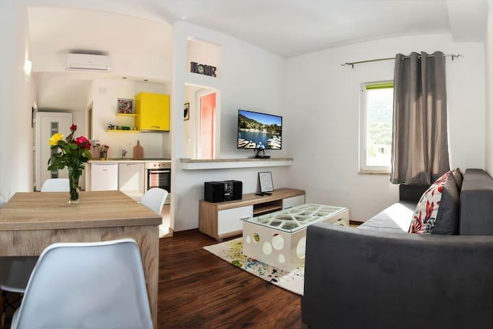 Apartman DanIva