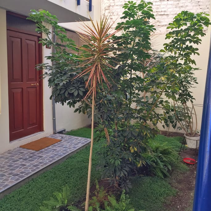 First floor private courtyard