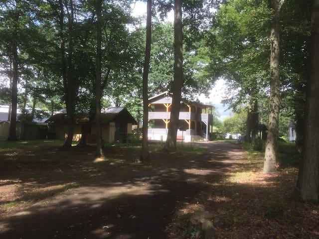 Jagdhaus im Wald