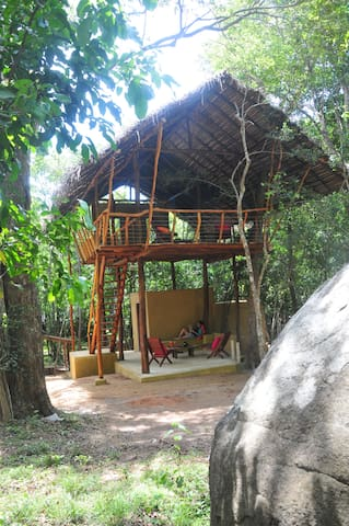 Back of Beyond, Sigiriya Rock - Comfy Tree House - Sigiriya