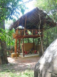 Back of Beyond, Sigiriya Rock - Comfy Tree House - Sigiriya - Ağaç Ev
