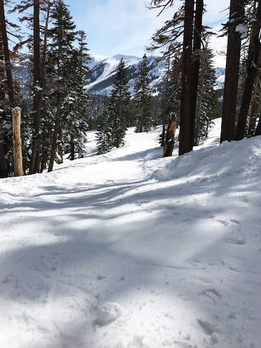 The gently sloping ski out trail.