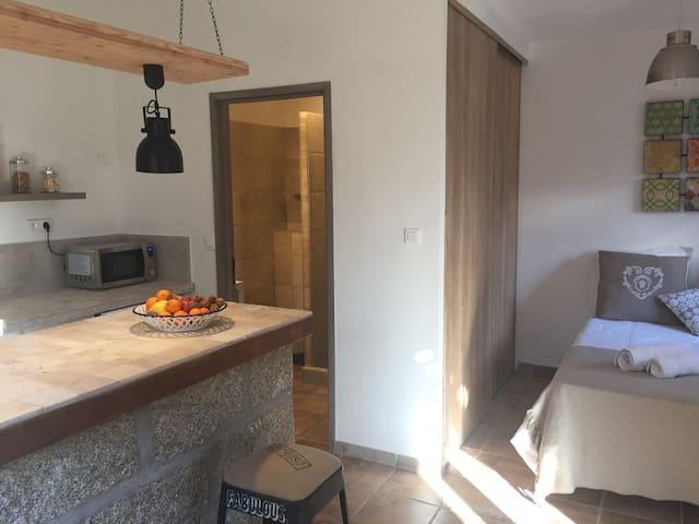Rez de villa entièrement rénové en 2017 - Sartène - Apartment