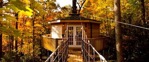 Holly Rock Treehouse