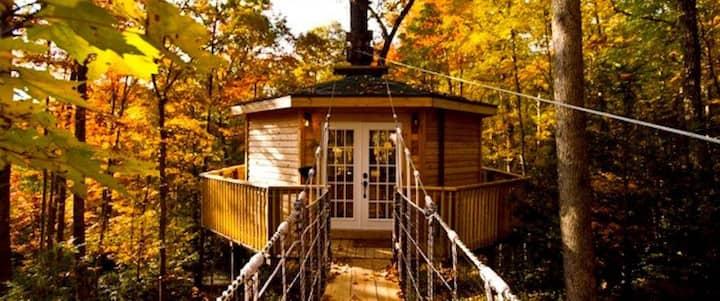 Holly Rock Treehouse