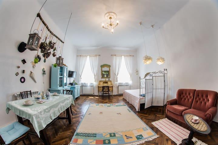 Stylish studio apartment - Targu Mures City Center