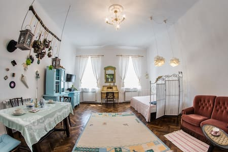 Stylish studio apartment - Targu Mures City Center