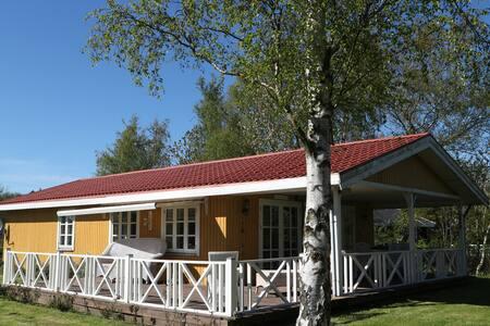 Solsort , Sortsø