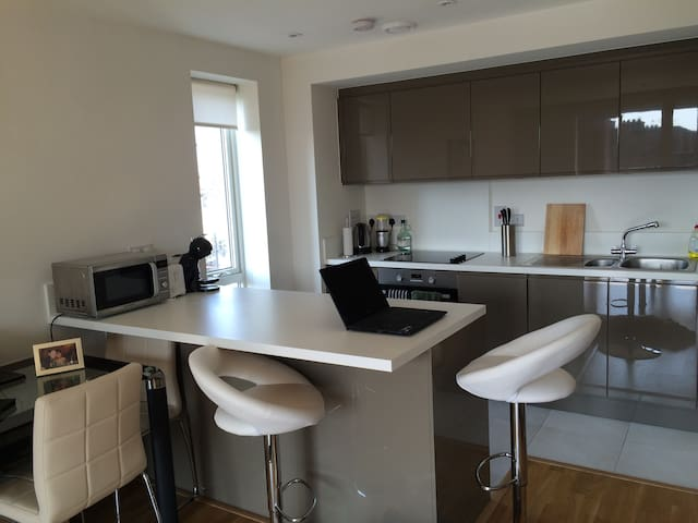 Modern, One Bedroom, Apartment - London - Wohnung