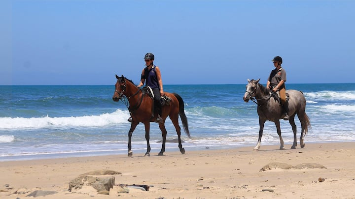 Experienced Horse Trail Guides