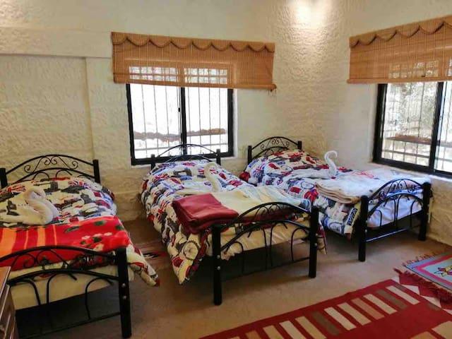 Petra holidays home1  Triple/ twin room