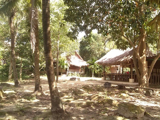 All-inclusive Conservation project (for 2 people) - Krong Preah Sihanouk - Bungalov