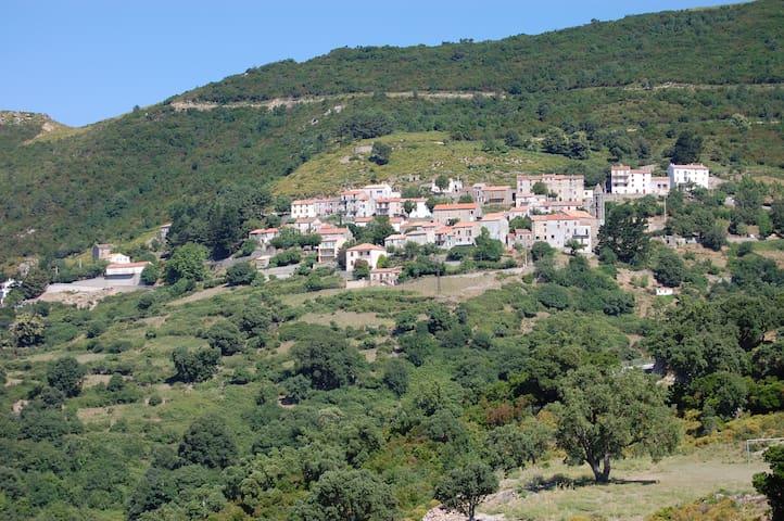 Maison de charme, Sud Est de la Corse