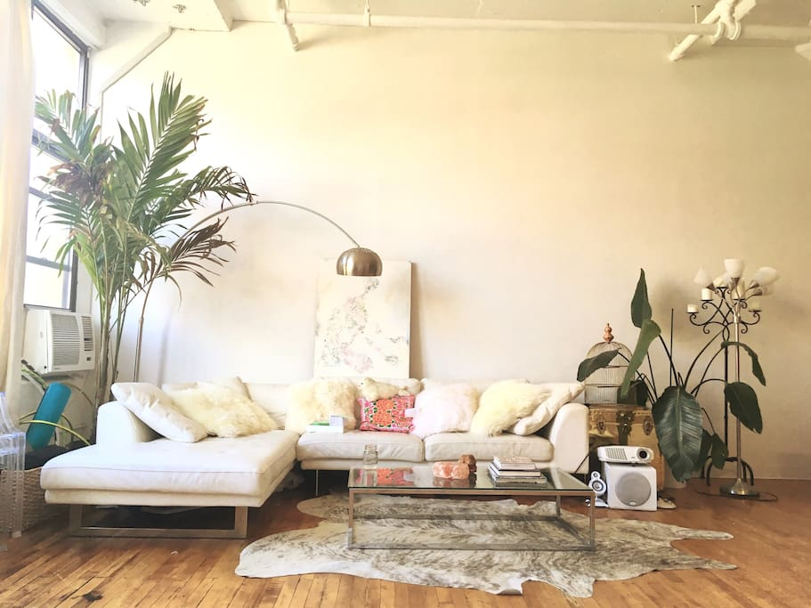 I have a new tall palm plant, great fluffy sheepskin pillows for the couch  and cowhide rug (not shown in other images !)