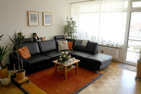 Fully equipped 1-bedroom flat near Ulm/Neu-Ulm