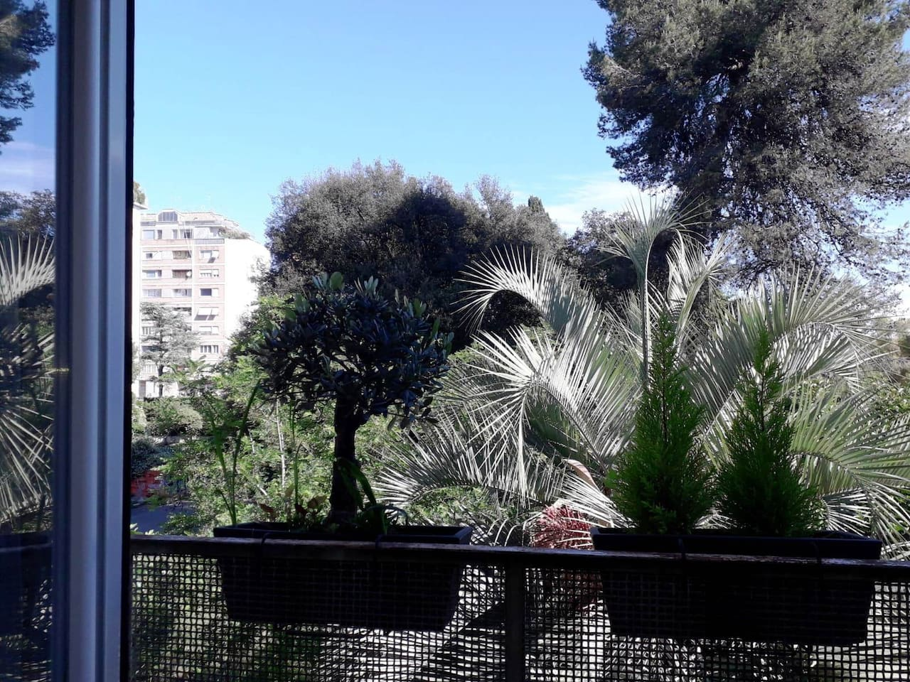 A 5 Star Rewied Room with a view in central Rome, quite rare all this nice trees in central Rome but this is how it is, in the morning you can wake up with the birds singing on trees. You are just 10 minutes journey from People Sq.! Relax guaranteed!