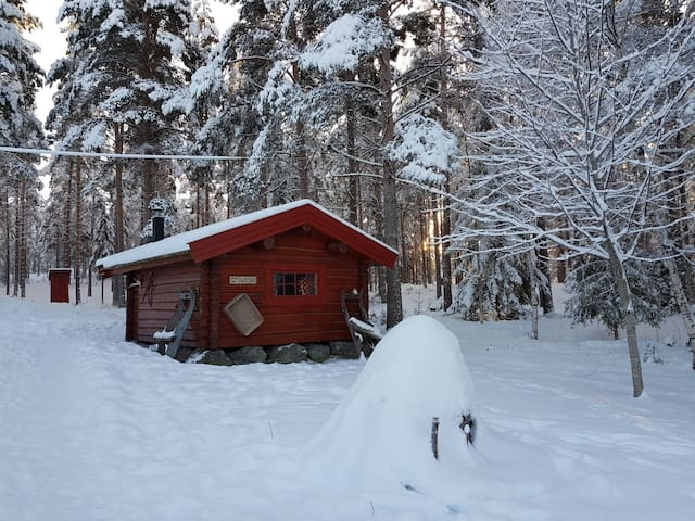 Experience genuine silence and farm life in Norway
