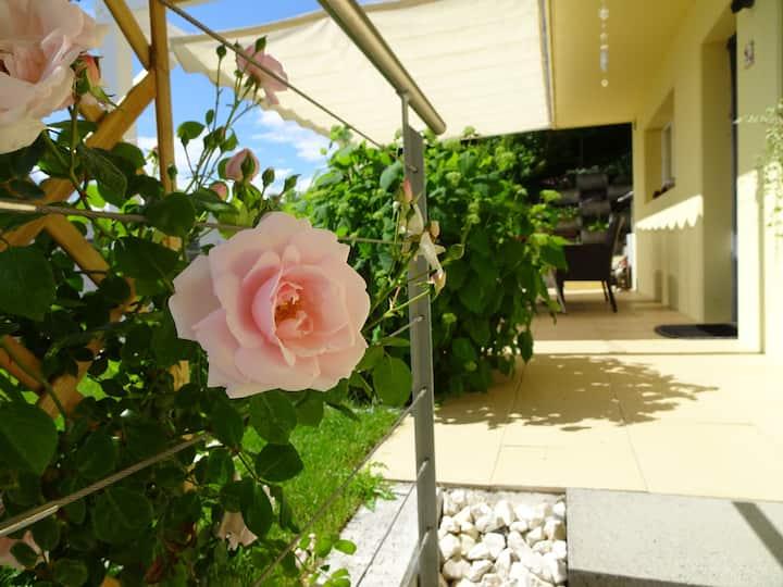 2Zi Wohnung nahe Sursee, Luzern, Olten und Aarau