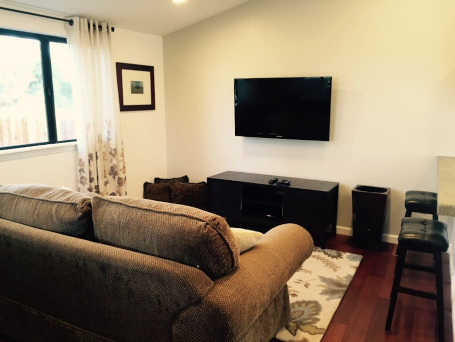 Cozy living room with flat screen television and Roku.