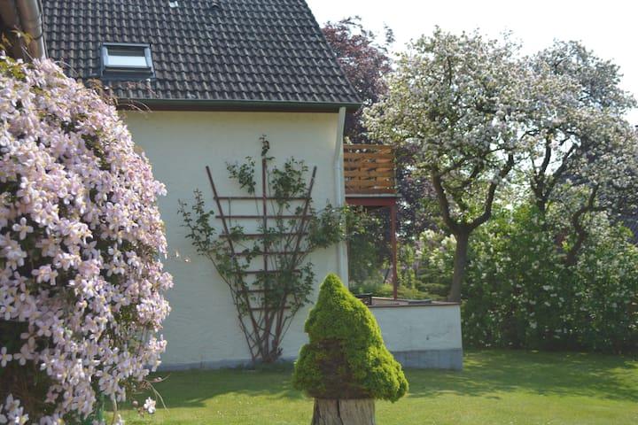 Ruhige, strandnahe Ferienwohnung mit Gartenblick - Scharbeutz - Appartement en résidence