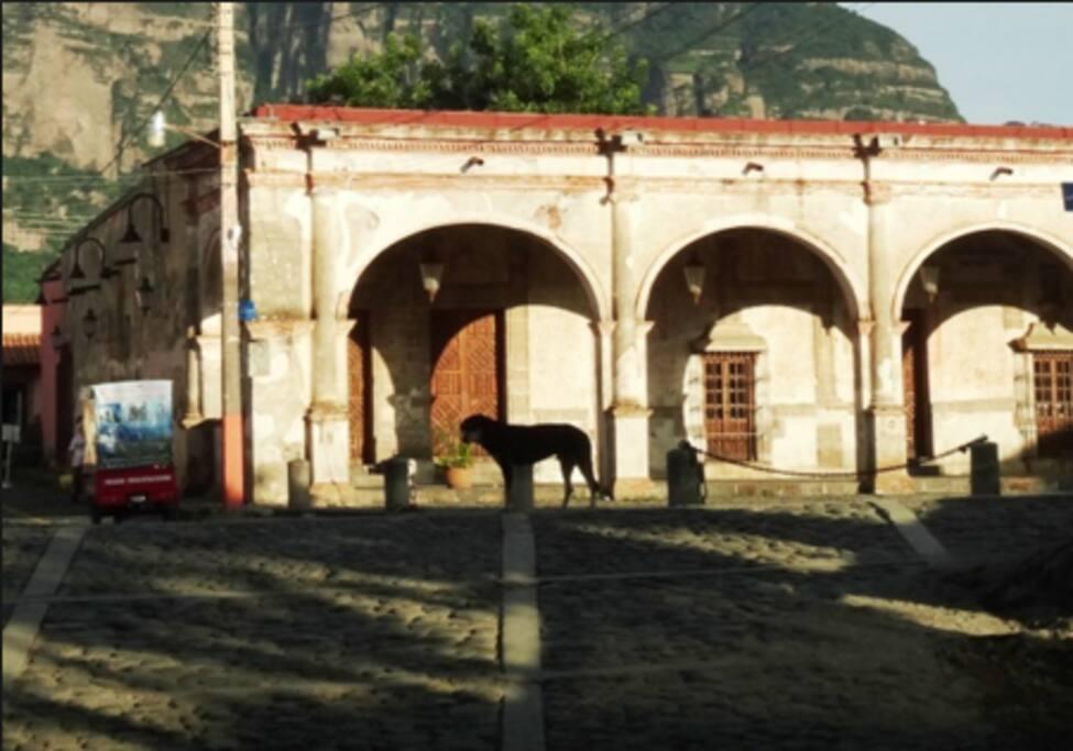 """Centro Cultural """"La Cerería"""""""