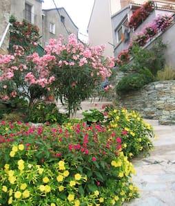 LOCATION DE VACANCES HAUTE-CORSE - Murato