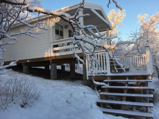Koselig hytte midt i Sápmi/ Marjabu.