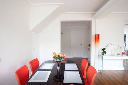 2 terraces Penthouse with nice hostess - Paris - Appartement