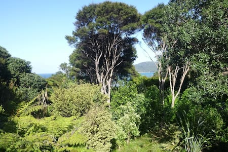 Cosy room at GBI Central, bush and beach beyond - Great Barrier Island